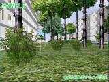 団地の植栽計画VR